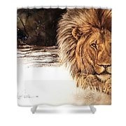 Ubathi Boss Shower Curtain