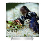 Ugly Bug Feast 2 Shower Curtain