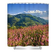 Umbria Shower Curtain