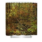 Unami Creek Feeder Stream In Autumn - Green Lane Pa Shower Curtain