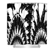 Undefined Black Lace Shower Curtain