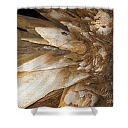 Underground Wonders. Luray Caverns Va Shower Curtain