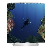 Underwater Photographer At The Entrance Shower Curtain
