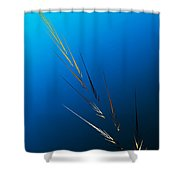 Untitled 2 082212 Shower Curtain