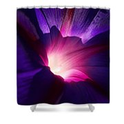 Up Close And Purple Shower Curtain