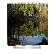 Up Down Beauty All Around Shower Curtain