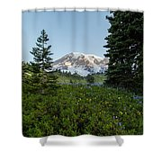 Upon A Hill Of Flowers Shower Curtain