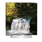 Upper Butte Creek Falls 3 Shower Curtain