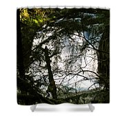 Upper Butte Creek Falls Through The Trees Shower Curtain