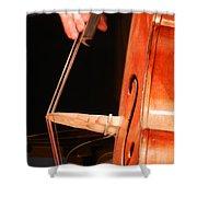 Upright Bass 1 Shower Curtain