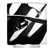 Upside Down Butterfly Shower Curtain