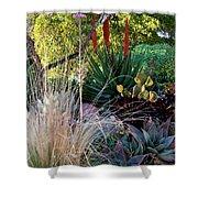 Urban Garden With Cactus Shower Curtain