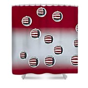 Usa Reflections Shower Curtain