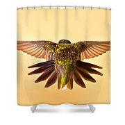 Usaf Hummingbirds Wings Shower Curtain