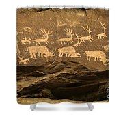 Utah Petroglyphs 1 Shower Curtain