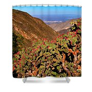 Valle Del Desierto Shower Curtain