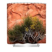 Valley Of Fire Yellow Vegetation Nevada Shower Curtain