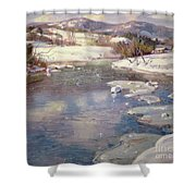 Valley Stream In Winter Shower Curtain