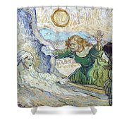 Van Gogh: Lazarus Shower Curtain