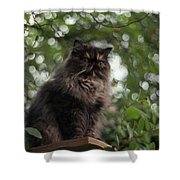 Vantage Point Shower Curtain
