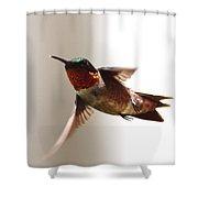 Varoooom Shower Curtain