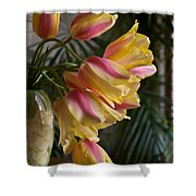 Vase Beauty Shower Curtain