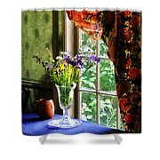 Vase Of Flowers And Mug By Window Shower Curtain
