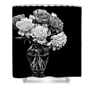 Vase Of Peonies In Black And White Shower Curtain