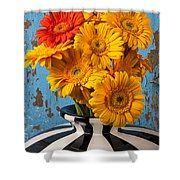 Vase With Gerbera Daisies  Shower Curtain