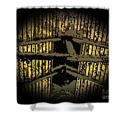 Vaulted Beams Shower Curtain