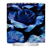 Vegetables, Red Cabbage Shower Curtain