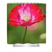 Velvet Petals Shower Curtain