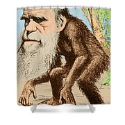 Venerable Oran-outang, Contribution Shower Curtain