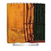 Verde Jaula Shower Curtain by Skip Hunt