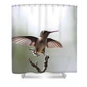 Vertical Takeoff Shower Curtain