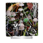 Very Tull Mushrooms Shower Curtain