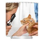 Vet Examining Kitten Shower Curtain