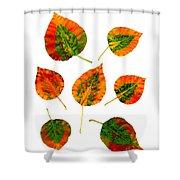 Vibrant Autumn Leaves Shower Curtain
