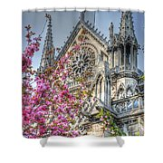 Vibrant Cathedral Shower Curtain