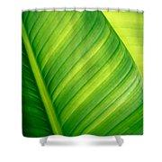 Vibrant Green Leaf Shower Curtain