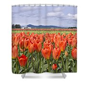 Vibrant Orange Spring Shower Curtain