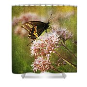 Victuals II Shower Curtain
