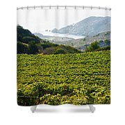 View From Catalina Island Shower Curtain