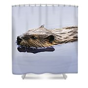 View Of Beaver, Chaudiere-appalaches Shower Curtain