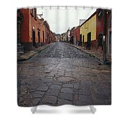 View Of Cobblestone Streets In San Shower Curtain