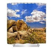 View Of Joshua Tree Shower Curtain
