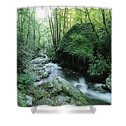 View Of Roaring Fork Creek Shower Curtain