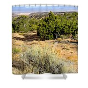 View Of The Desert New Mexico Shower Curtain