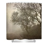 Vigilants Trees In The Misty Road Shower Curtain