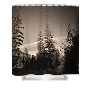 Vignette In Sepia  Shower Curtain